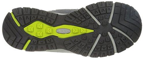 Keen Aphlex Mid, Chaussures de Randonnée Hautes Homme Grey (gargoyle/macaw)