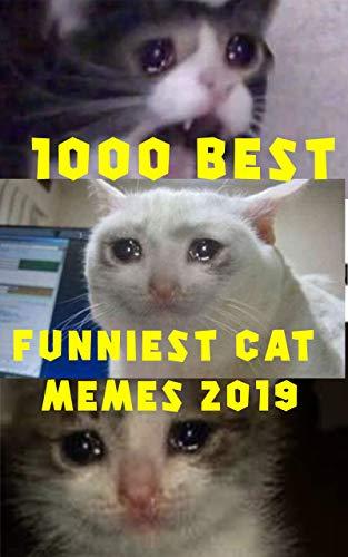 1000 Best Funniest Cat Memes 2019 These Cat Memes Clean