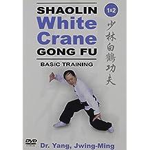 Taiji Melody: Basic Training