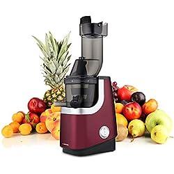 EZIchef Vitamin XL Smoothie - Extracteur de jus vertical avec filtre à smoothies - 45 tours / minute