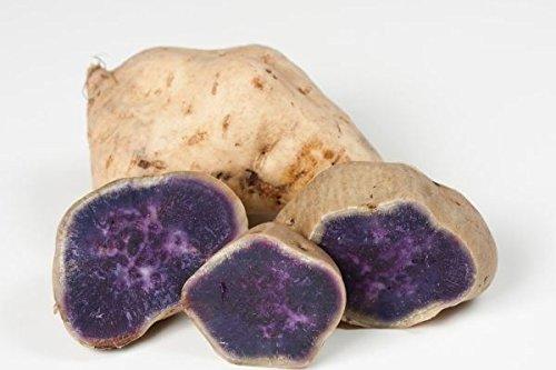 Blanc Skin Violet Igname, japonais Violet de pommes de terre ou japonais Sweet de pommes de terre (1,8 kilogram)