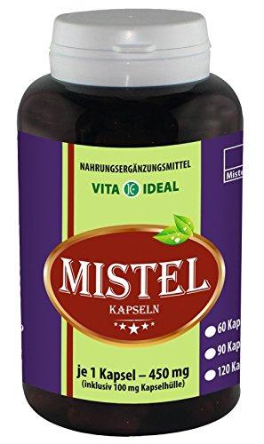 Mistel-viscum Album (Mistelkraut 360 Kapseln je 350mg Viscum album)