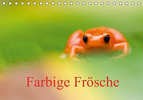 Farbige Frösche (Tischkalender 2019 DIN A5 quer): Frösche aus der ganzen Welt (Monatskalender, 14 Seiten ) (CALVENDO Tiere)