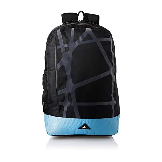 Aristocrat Hike Polyester 45L Hiking Rucksack Backpack | Travel Bags (Grey)