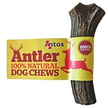 Antos Antler Kauspielzeug für Hunde, Geweihform, 100 % natürlich, in 3 Größen erhältlich -