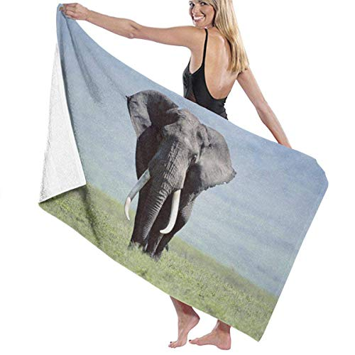 sd4r5y3hg Luxury Oversized Beach Towels, Women's Bath Towel Wrap - Elephant HD Travel Waffle Spa Beach Towel Wrap for Girls 31\