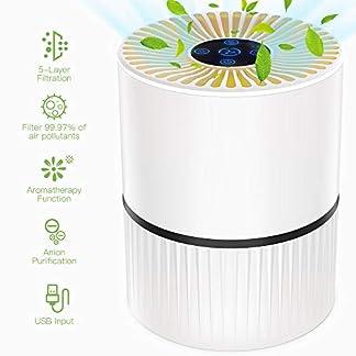 Purificatore aria casa con Filtro HEPA, 5 Strati Filtrazione 3 Modalità Effetti Filtrazione 99,97% di Polvere Fumo Odori Batteri Acari della Polvere, 20dB-50dB 2/4/8H Timer per Casa Ufficio-Duomishu