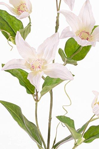 artplants Set 12 x Künstlicher Clematiszweig BARKU, 5 Blüten, Creme, 80 cm – 12 Stück Deko Waldrebe/Kunstblumen Clematis