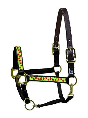 Ribbon Pony-halter (Perri's Ribbon Nylon Safety Pony Halfter, Ribbon Nylon Safety Halter, Black Ladybugs, Pony)