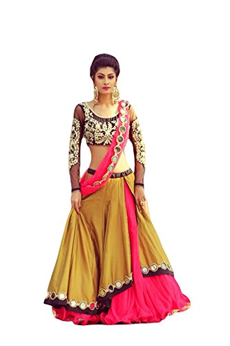 Devani-Brothers-Banglory-Silk-Net-Embroidred-Beautifull-Lehenga-Choli-For-Women