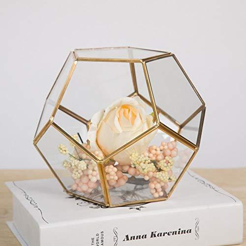 Mini Glasterrarium Geometrisches Glas Sukkulente Pflanzgefäß Haus Dekoration Geometrische Wand Decor Container Ewige Blume Geschenk Box Dekorationen Micro Landschaft Glas Deckung für Zimmerpflanzen