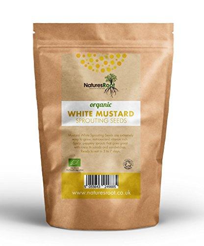 Natures Root - Graines bio moutarde - Jaune - Pour germination -Micro pousses vertes - Plantation de jardin - Jardinage de légumes 1kg