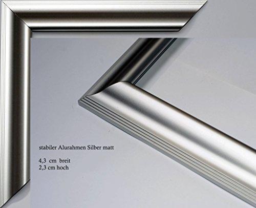 Vogel Design Bilderrahmen - Aluminium Köln Silber matt 40x30 cm 30x40 cm Hier mit entspiegeltem...