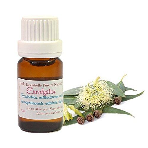 huile-essentielle-hebbd-d-eucalyptus-globuleux-10ml-eucalyptus-globulus-livraison-gratuite
