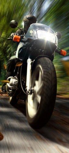 Preisvergleich Produktbild posterdepot Türtapete Türposter Fahrendes Motorrad im Wald mit Herbstlaub - Größe 93 x 205 cm,  1 Stück,  ktt0042