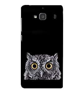 printtech Bird Owl Eyes Back Case Cover for Xiaomi Redmi 2S::Xiaomi Redmi 2::Xiaomi Redmi 2 Prime