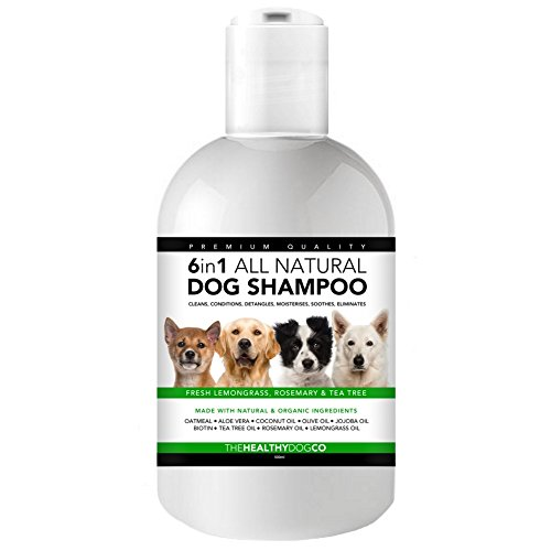 6-in-1-All-Natural-Dog-Shampoo-Lemongrass-Rosemary-Tea-Tree-500ml-The-Best-Wash-for-Healthy-Dogs-Cleans-Conditions-Detangles-Moisturises-Relieves-Itchiness-Eliminates-Germs-Smells