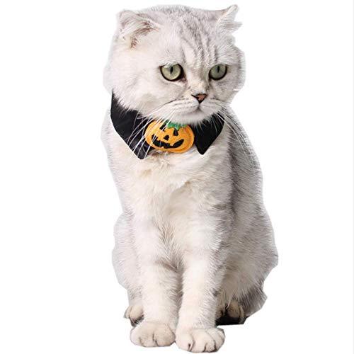 ANIAC Pet Halloween Klettverschluss Kürbis Halsband Katzen Kleine Hunde schwarz