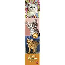 Katzen long - Herzige Katzen - Kalender 2017