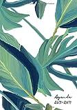 Agenda 2018-2019: Agenda Scolaire de Juillet 2018 à Août 2019, Semainier simple & graphique, motif palmier tropical
