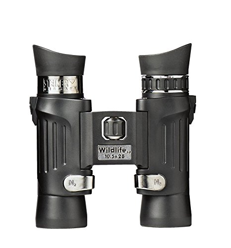 Best Saving for Steiner Wildlife XP 10 x 26 Binoculars Online