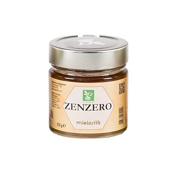 Mielosità allo Zenzero - 270 gr - Gabannini