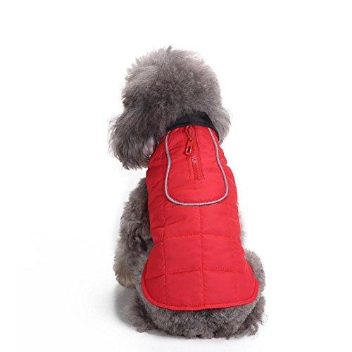 Myyxt Wasserdicht Haustiere Hund Welpen Weste Jacke Kleidung Warm Winter Wappen , (Riesige Kostüme / Brüste)