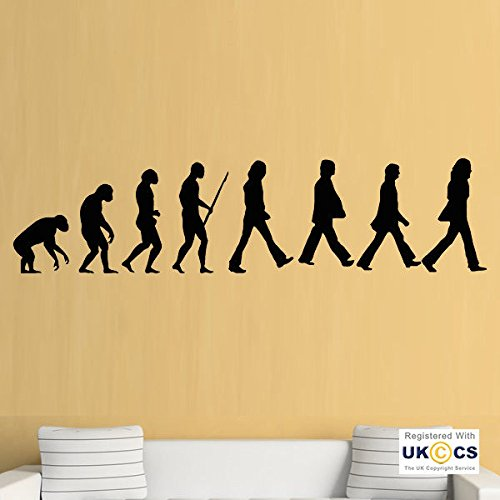 Evolution studios le meilleur prix dans Amazon SaveMoney.es