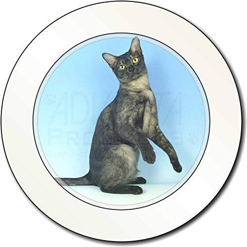 Advanta - Tax Disc Holders Pretty Asian Smoke Katze AutovignetteGenehmigungsinhaber Geschenk