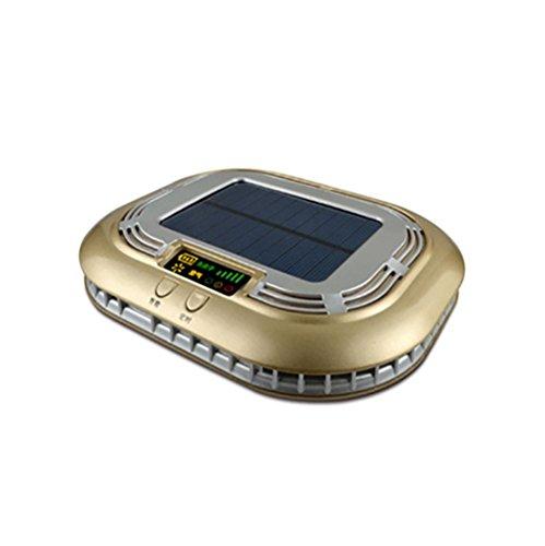 RUIX Auto Luftreiniger Auto Solar Negative Ionen Sauerstoff Bar Aromatherapie Auto Zusätzlich Zu Formaldehyd Zu Verschiedenen Rauch,Gold