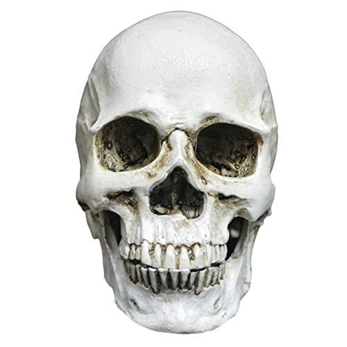 Kongqiabona Kleine Skeleton Dekoration Kreative Horrible Modell Spielzeug Scary Heikles Spielzeug Home Office Dekoration Für Halloween Party