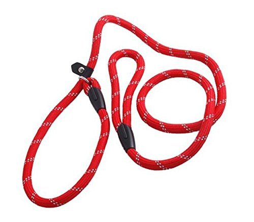erioctry Pet Dog Nylon Adjustable Loop Slip Traning Leash Lead Rope Slip Dog Leash and Collar 1.2m Red 1