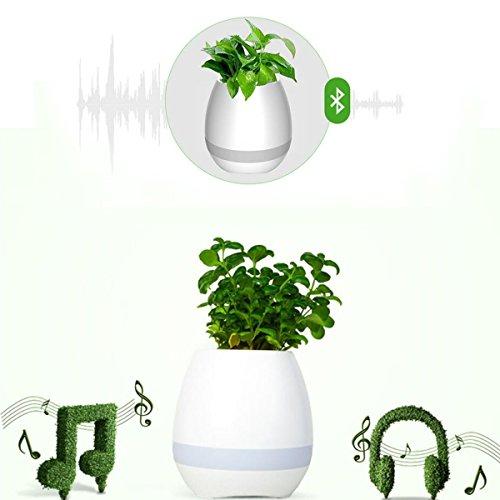 Bluetooth Musik Blumentopf Wiederaufladbare intelligente Touch-Steuerung Klavier-Musik Flowerpot Lautsprecher mit Tabellen-Lampe Buntes Nachtlicht LED-Stimmungs-helles (Reinigen Klavier)