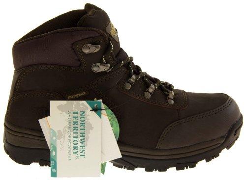 Footwear Studio, Stivali donna Dark Brown