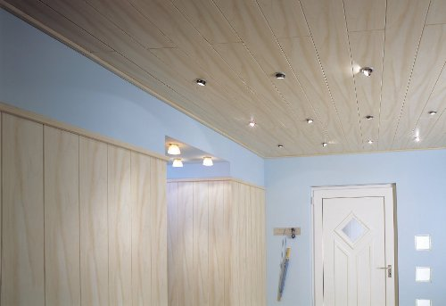 Avanti Wandpaneel und Deckenpaneel Alaska Birke 2200 x 168 x 10 mm