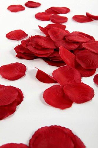 Liroyal - Pétalos de rosa Seda de marfil, ideal para San Valentín. width=