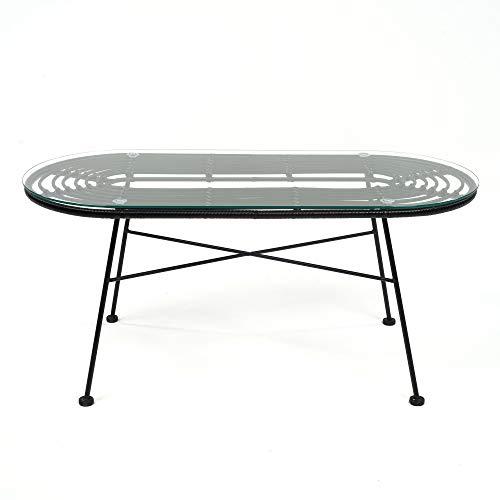DLM Design Table de Jardin en Verre et Acier L100xH45 cm Noir Acapulco