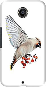 DailyObjects Waxwing Feeding Mobile Case For Google Nexus 6