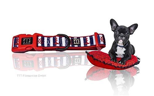 Frenchy and Friends Hundehalsband   Halsband für Hunde   aus strapazierfähigem Polyester   für Französische Bulldogge, Frenchie, Frenchbulldog, Mops, Bullterrier, Boston Terrier. (The AHOY Collar) -