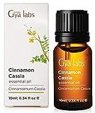 Zimt Cassia ätherisches Öl - 100% reine therapeutische Qualität für Haare, Lippen, Haut, Diffusor - 10ml