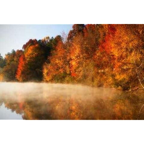 Feelingathome.it, STAMPA SU TELA 100% cotone INTELAIATA Autumn Mist IV cm 58x89 (dimensioni personalizzabili a richiesta)