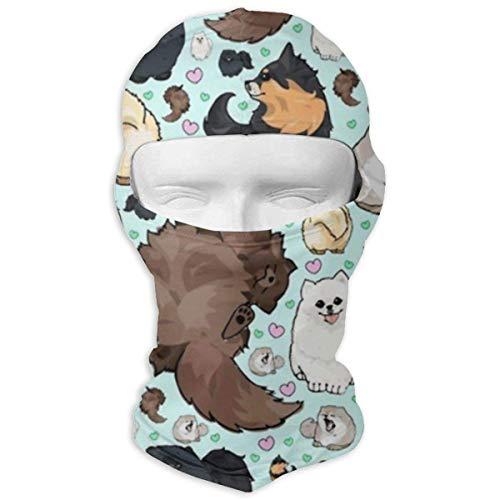 Wfispiy Verschiedene Pomeranians Magic Seamless Bandana Outdoor Kopfbedeckung Schal Multi Use