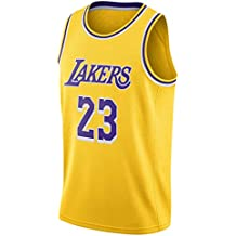Lebron James, Camiseta de Jugador de Baloncesto, Los Angeles Lakers, Camiseta con Bordado