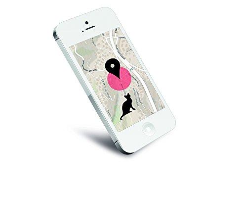 Petpointer – kleinster GPS Tracker für Tiere - 6