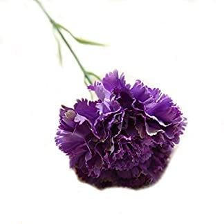 Ogquaton 5 Unids Plástico Artificial Clavel Flores Decorativas para Boda Hogar Decoración DIY Púrpura Durable y Útil