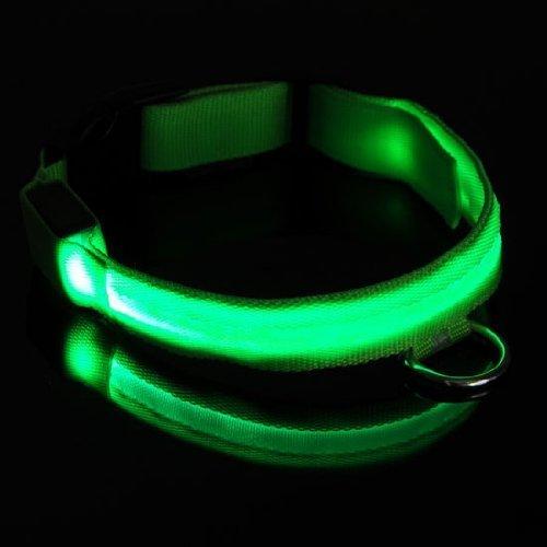 Sicherheit Halsband für Hunde, blinkende LED-Lichter bis das Halsband, sehen, wo Ihr Hund in der ist. Leuchtendstarkes blinkendes Sicherheitshalsband für Hunde hält Ihren Hund sichtbar bei Nacht 4-Wege-LED Glow Bright Sicherheit Halsbänder (grün)
