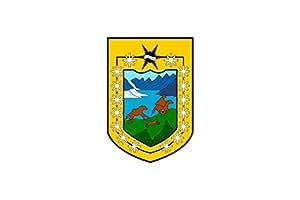 magFlags Flagge: Large Aysen, Chile | Aysen Region, Chile | XI Región de Aisén del General Carlos Ibáñez del Campo | Querformat Fahne | 1.35m² | 90x150cm » Fa