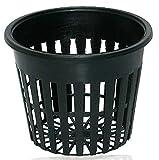 Pentole 12pcs intaglio della rete della maglia 3inch netto Coppa carrello idroponica Piantare Heavy Duty Net Cup Basket Per Giardino idroponica Piantagione