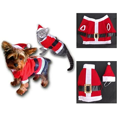 Chien Mignon Costumes Photos - Sandy - Costume Noël pour chat -