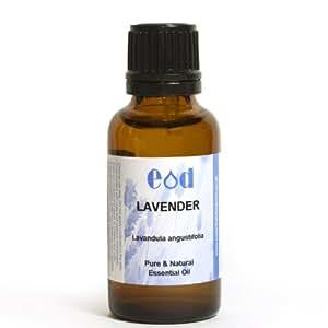 LAVENDER, ESSENTIAL OIL Lavandula angustifolia 30ml by EOD - Essential Oils Direct